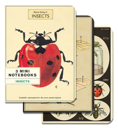 Cavallini Notizbücher Set Insects